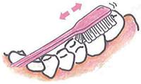 下の奥歯の溝をみがく